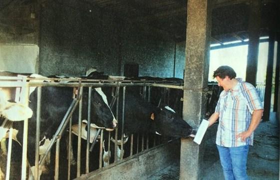 Xosé Zapata Reglamento a la Vaca rec